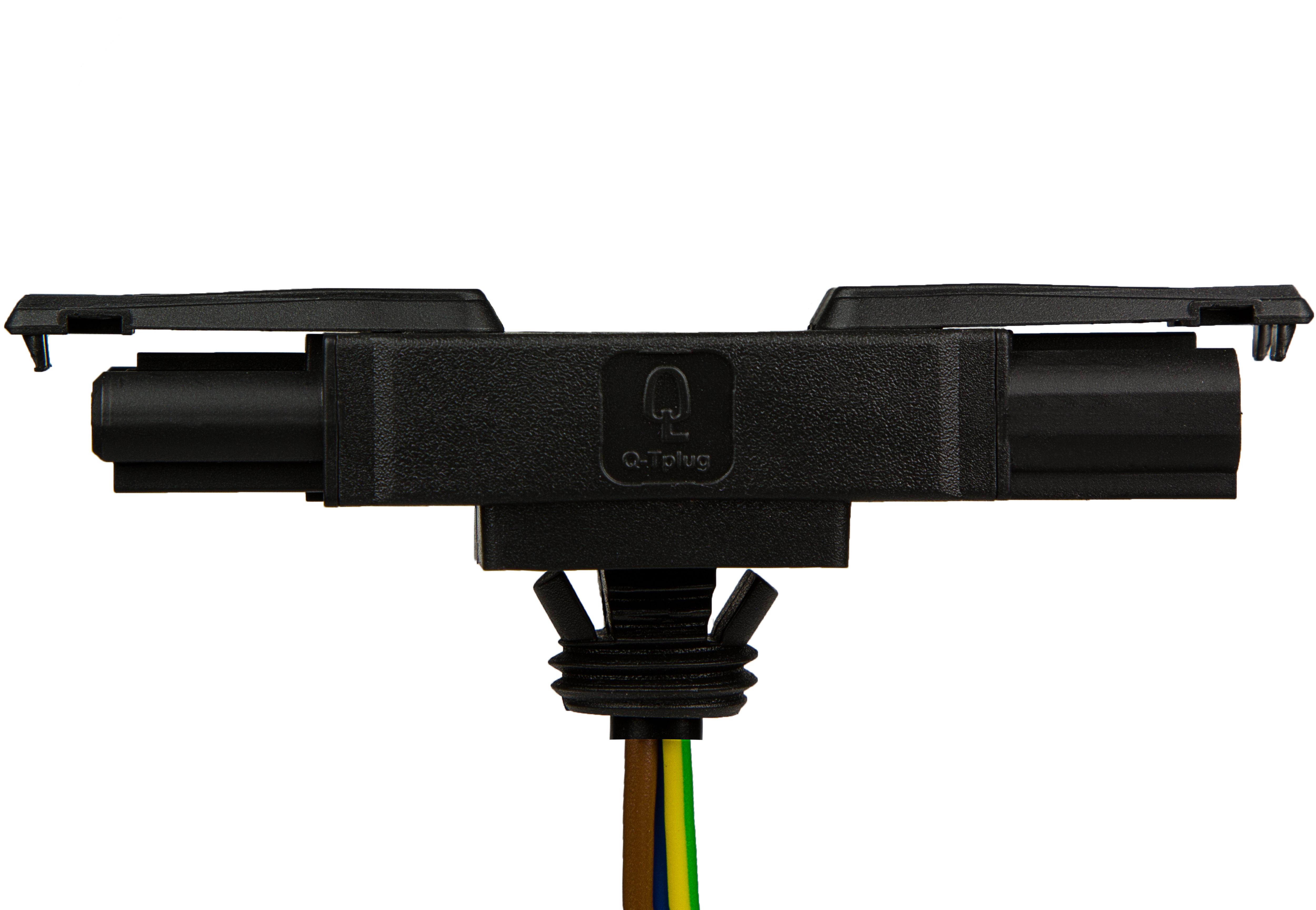 Q-Tplugs
